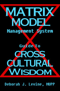 Matrix Model Management System